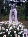 Our Lady of the Afflicted